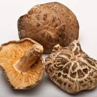 Know your mushrooms: Dried shiitake can have smooth or bumpy caps. The gills should be a clear yellow and well defined.
