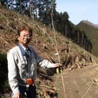 Looking ahead: Hiroshi Ugajin, a Tokyo government forestry official, stands on cleared land in Ome City set to be replanted as mixed woodland. | EDAN CORKILL