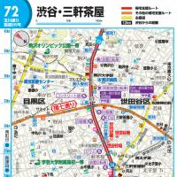Getting out: Booklets such as the best-selling 'Shinsaiji Kitakushien Mappu' ('Map for Walking Home in the Event of an Earthquake') (below) show key routes home in the event of a large quake in Tokyo. Facilities such as public toilets, and potentially risky spots such as paths beside concrete-block walls that may fall over, are highlighted. | SHOBUNSHA, SATOKO KAWASAKI