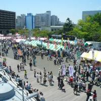 Food fair: Visitors peruse the varieties of curry on hand at last year's Yokosuka Curry Festival. The Kanagawa prefecture city boasts a historical claim to the dish.