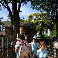 Saddle up: The Yoyogi Pony Park offers free rides to young ones. | JASON JENKINS