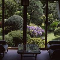 Different strokes: Among things to see in Atami is the Kiun-Kaku residence built in 1919, and its garden (above), and the Riviera-style seafront.