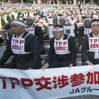 Against the grain: Farmers stage a rally against Japan's participation in negotiations for the Trans-Pacific Partnership free-trade agreement at Hibiya Park in Tokyo in March. | KYODO