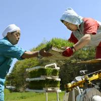 Fresh start: Farmers plant rice Saturday in Tamura, Fukushima Prefecture. | KYODO