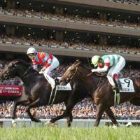 Take trains sights on Arc after record Derby win