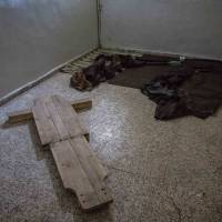 Evidence of torture found in Syrian prisons: report