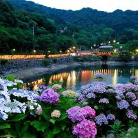 June blooms decorate Japan