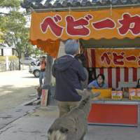 Nara still boasts its ancient lure