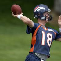 NFL fathers Manning, Harbaugh discuss famous sons