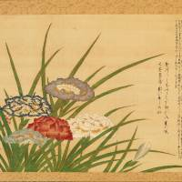 Matsudaira Sadatomo's 'Iris produced by an authority of irises' (1855)