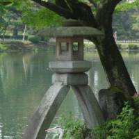 Fine forms: A grey heron poises beneath the Kotoji stone lantern at Kenroku-en Garden in Kanazawa, Ishikawa Prefecture.
