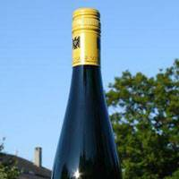 Top tipple: A Saarstein Riesling from Mosel vineyards, where many vines are more than 40 years old.