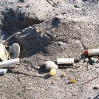 Sand signals: Plastic pellets on the beach at Odaiba, Tokyo, are a mere hint of the untold damage countless toxic tons of them are doing far out at sea. | WINIFRED BIRD