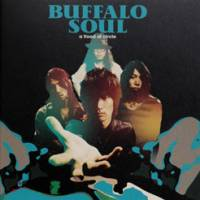 A Flood of Circle 'Buffalo Soul'