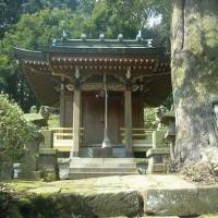 The secluded but pristine Kumano Shrine | BURRITT SABIN PHOTO
