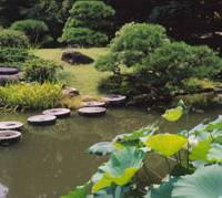 Rocks of ages:  These steppingstones to a small island in the East Garden make an interesting reference to the West Garden's founder, wealthy bleacher and dyer  Michikiyo Kiyosumi, since they were once used as mortars in which dyers' pigments were ground.