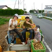 Spuds ready for market: Members of Wakamono Nouentai pose after harvesting potatoes at a farm in Ibaraki Prefecture in July. | COURTESTY OF WAKAMONO NOUENTAI