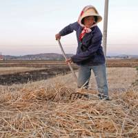Facing a drier future: A farmer harvests wheat in Yunnan province, China, in May 2011. Falling water tables are already adversely affecting harvest prospects in China, which rivals the United States as the world's largest grain producer. | BLOOMBERG