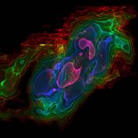 Exogas: A 3-D visualization of cold carbon monoxide gas is shown for nearby galaxy NGC 253 (the 'Sculptor Galaxy'), with the vertical axis showing velocity and the horizontal axis showing position across its center. Huge amounts of cool gas are being ejected from the central parts of the galaxy, making it difficult for new stars to form. | AFP-JIJI