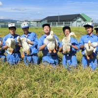 Quack team: Saya High School students with some of the school's paddy ducks. | PHOTO COURTESY OF SAYA HIGH SCHOOL