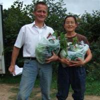 Japanese vegetable farm is a hit in Britain