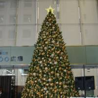 Illuminating: The Christmas 'Tree of Hope' is lighted Tuesday in Tokyo's Marunouchi district during a fundraising event hosted by Refugees International Japan. | MASAMI ITO