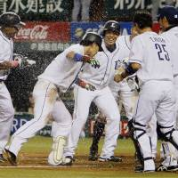 Let's party: The Lions celebrate after Hideto Asamura's three-run sayonara home run against the Fighters on Wednesday. Seibu won 7-6. | KYODO