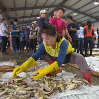 Highly selective: A buyer sorts fish after an auction operated by the National Federation of Fisheries Cooperatives at the Port of Mokpo in South Korea on Sept. 9. | BLOOMBERG