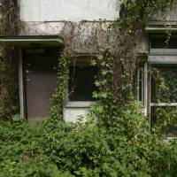 Abandoned abodes: Overgrown vegetation covers a vacant house in Yokosuka, Kanagawa Prefecture, in August. | BLOOMBERG