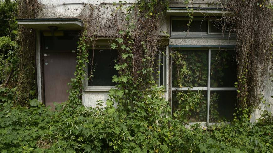 Abandoned abodes: Overgrown vegetation covers a vacant house in Yokosuka, Kanagawa Prefecture, in August.
