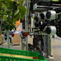 Fruits of ingenuity: Agricultural machinery maker Shibuya Seiki and the National Agriculture and Food Research Organization demonstrate a robot that can pick ripe strawberries at the annual Auto-ID and Communication Expo at the Tokyo Big Sight convention center Wednesday. | AFP-JIJI