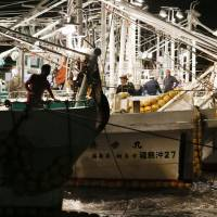 Trial fishing resumes off Fukushima after radiation tests