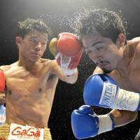 Nowhere to run: Daiki Kameda punches opponent Rodrigo Guerrero during the eighth round of their IBF super flyweight world title bout on Tuesday in Takamatsu. Kameda claimed the vacant title by unanimous decision. | KYODO