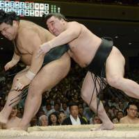 Harumafuji bounces back; Hakuho stays perfect