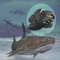 Jaws I:  This illustration from the Chinese Academy of Sciences shows an armored fish in the Silurian seas of present-day China. Inset is its heavily plated fossil, which had a jaw like that of modern bony fish. | AFP-JIJI