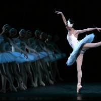 Ballerina brains hold the secret to balance, may help treat chronic dizziness