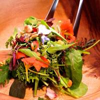 A vibrant salad at Anis | ROBBIE SWINNERTON