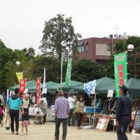 Fares fair: Visitors shop for produce from all over Japan at the Atsugi event.