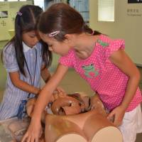 Getting to know you: A 3-D puzzle of the human body teaches kids which organ goes where.   JASON JENKINS