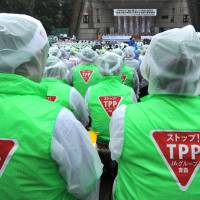 TPP talks getting down to nitty-gritty