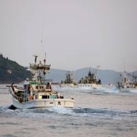 Finding a niche: Purse seiners, including the Ichimaru (foreground), head out from Nishinoshima in Shimane Prefecture on the evening of Sept. 10. | KYODO