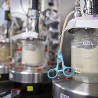 And lo: Amyris tests new strains of yeast in this fermentation room before sending them to large production facilities in Brazil | THE WASHINGTON POST