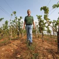 Chinese chateau: Olivier Richaud stands in a vineyard started by French vintner Domaines Barons de Rothschild and that he directs in Penglai, in east China's Shandong province, on Aug. 29. | AFP-JIJI
