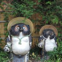 Gone to pot: Two of the ceramic Tanuki with straw hats and prodigious testicles that await at the lodge in Dogenso, Gunma Prefecture, where I stopped over. | MARK BRAZIL PHOTO