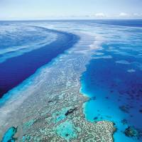World of pain: A leaked draft of an IPCC report predicts starvation, poverty, disease, flooding, heat waves and droughts will likely worsen as the planet warms, while Australia and New Zealand are at risk of losing their precious coral reef ecosystems, including the Great Barrier Reef (above) | AP