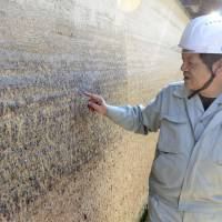 Vandalized: An employee of the Nara Prefectural Board of Education points to graffiti carved into an ancient wall at Horyuji Temple in the town of Ikaruga. | KYODO