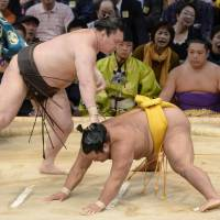 Yokozuna rivals still tied for lead