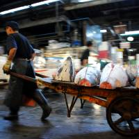 Where's the soy sauce?: A man carts thick chunks of tuna to a store at the Tsukiji fish market in Tokyo last month | SATOKO KAWASAKI