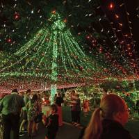 Australian family sets world record with half a million Christmas lights