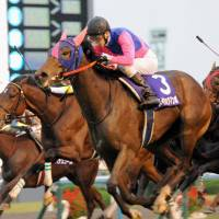 Mambo moving: Under jockey Koshiro Take, Meisho Mambo gallops to the finish line to win the Queen Elizabeth II Cup at Kyoto Racecourse on Sunday. | KYODO
